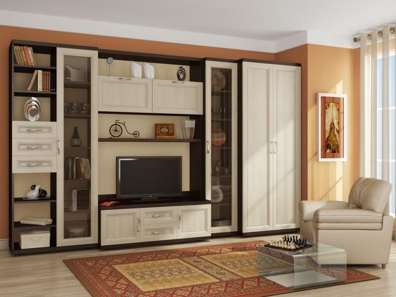 Корпусная мебель в гостиную